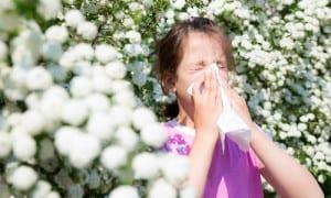 earlier allergies this seaso