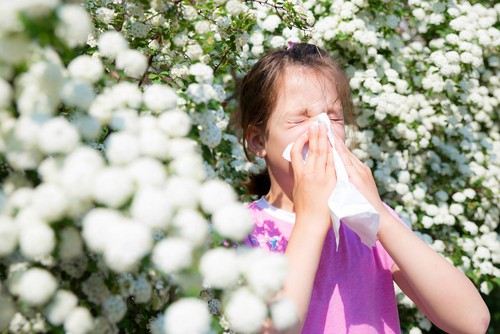 child health newsearlier than expected allergy season Earlier Than Expected Allergy Season