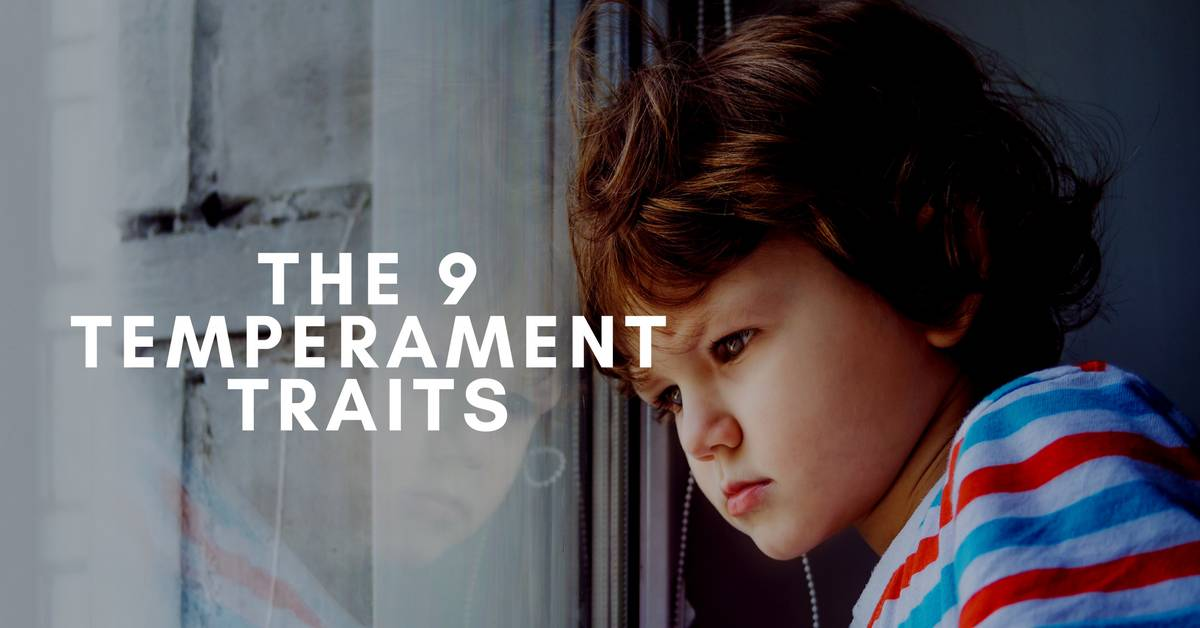 The 9 Temperament Traits