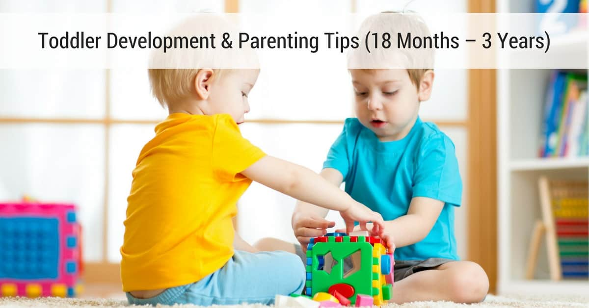 Toddler Development Parenting Tips 18 Months – 3 Years_mini