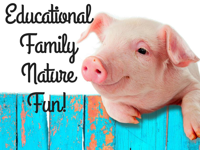 Educational Family Nature Fun!