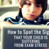 How to Spot the Signs That Your Child Is Suffering from Exam Stress Facebook