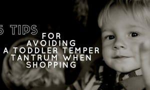 5 Tips for Avoiding a Toddler Temper Tantrum While Shopping Graphic Blog