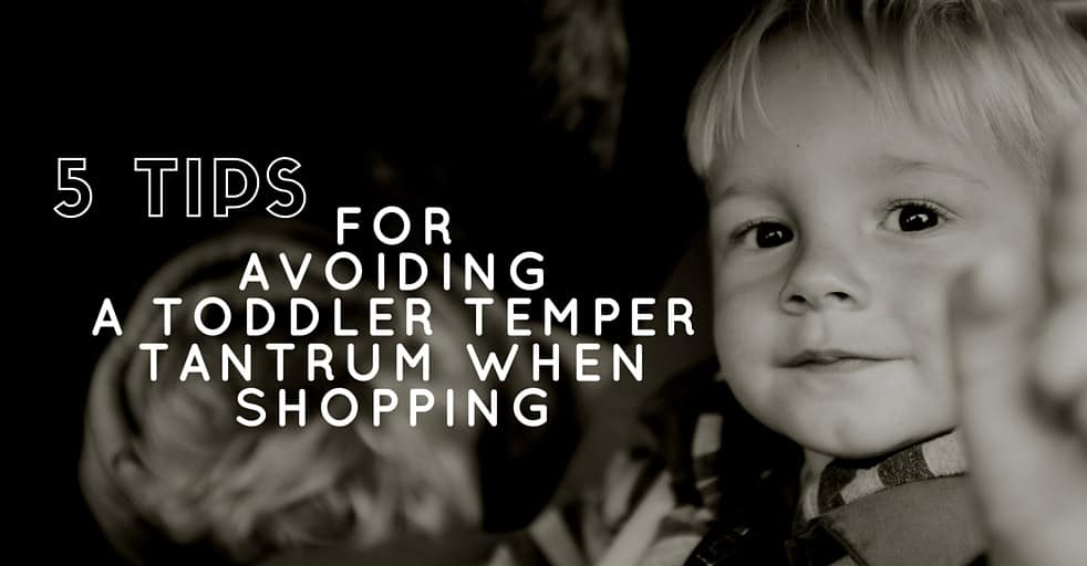 5 Tips for Avoiding a Toddler Temper Tantrum While Shopping Graphic Blog