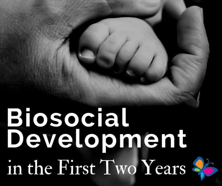 essay on biosocial development This essay seeks to critically evaluate my role as a child observer drawing on two or more theories of child development, i will look at the main.