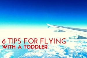 6 Tips for Flying with a Toddler (5)